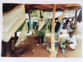 Santé Moustiquaires ADSES (2)